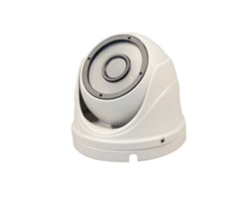 FIXED LENS 24LED EYE BALL DOME CAMERA B106