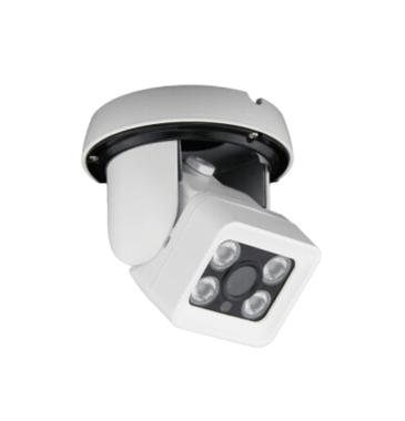 FIXED LENS 4 ARRAY LED DOME IP CAMERA F036