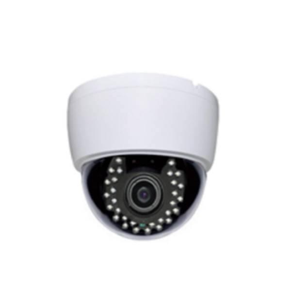 VF LENS 30LED DOME  IP CAMERA B103